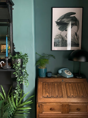 Dark Green Emulsion Paint COAT Paint Adulting