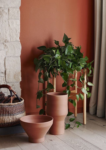Terracotta wall and plants