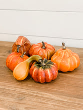 Load image into Gallery viewer, Assorted Mini Gourds