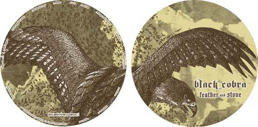 Feather and Stone (Picture disc)