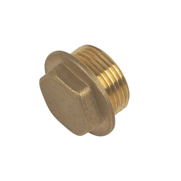 Male Flanged Plug