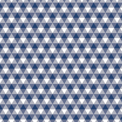 Land Of Liberty Gingham Navy