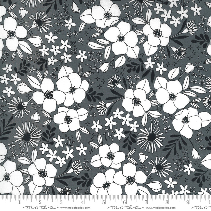 Illustrations Floral Mix Graphite
