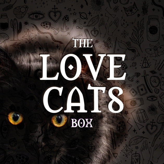 The Love Cats Box // Volume 1