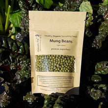 Load image into Gallery viewer, Sprouting Seeds - Mung Beans 100grm