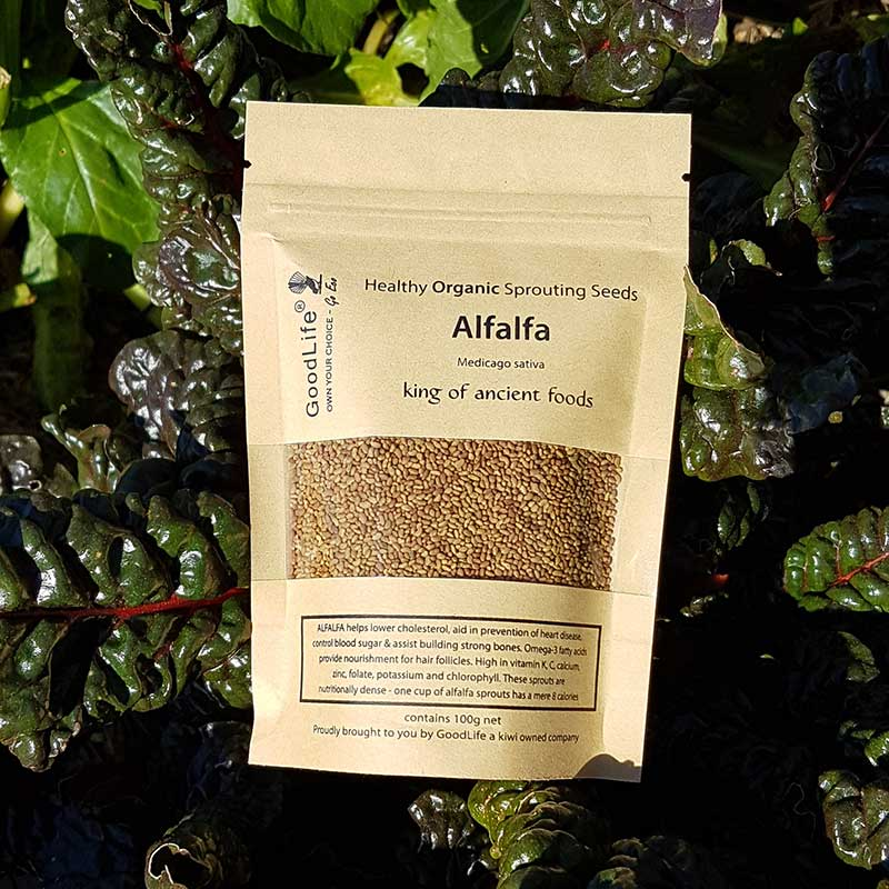 Sprouting Seeds - Alfalfa 100grm