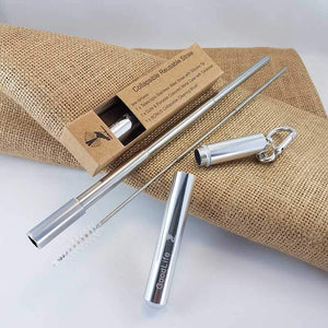 Straw Kit, Collapsible Reusable - Silver