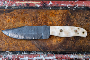 Hunting Knife- Camel Bone and Damascus Steel