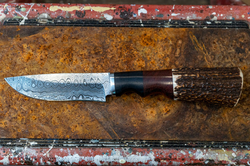 Jumbo Hunting Knife- Rosewood, Deer Horn, and Damascus Steel