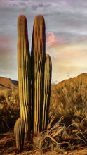 Load image into Gallery viewer, Saguaro