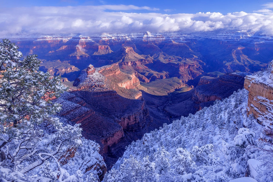 Snowy Morning at the Grand Canyon