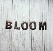 Load image into Gallery viewer, Block Letter Metal Art - Bloom