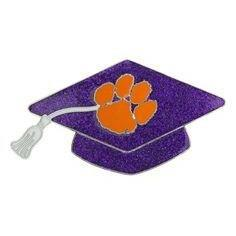Graduation Cap Hair Comb Purple Glitter With Orange Paw - Mr. Knickerbocker