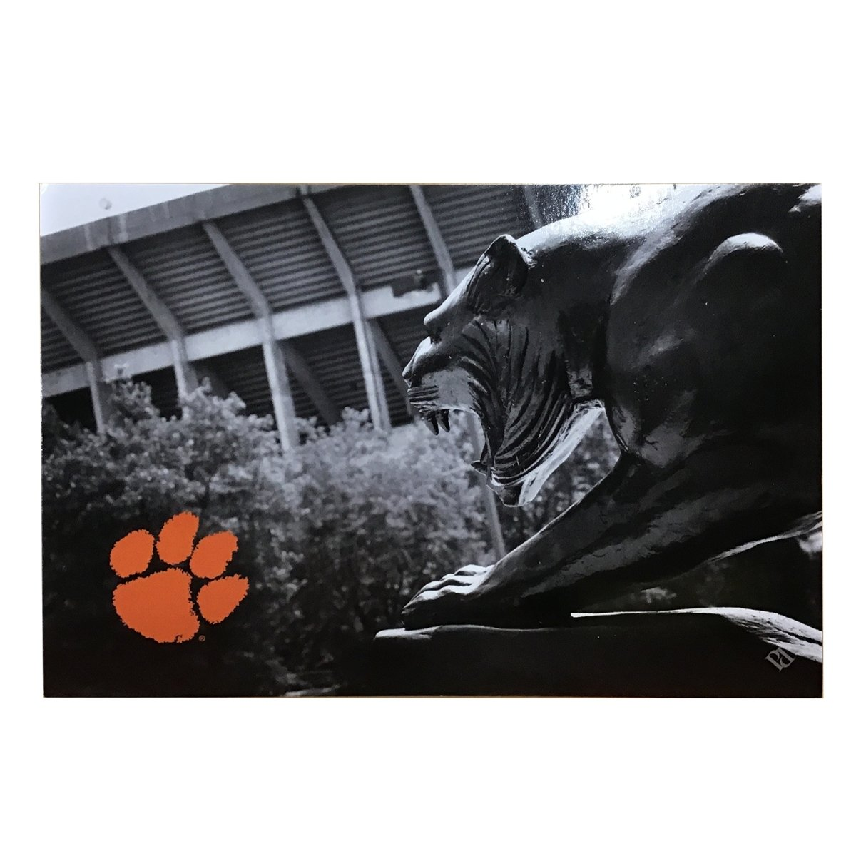 Tiger Statue Postcard Black and White With Orange Paw - Mr. Knickerbocker