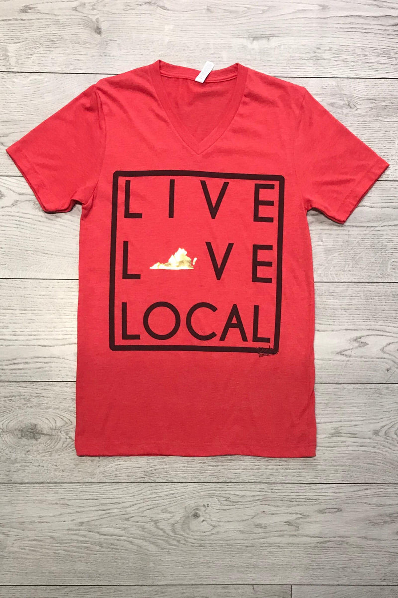 LAST CALL SIZE L | Live Love Local Virginia State V-Neck T-Shirt in Red