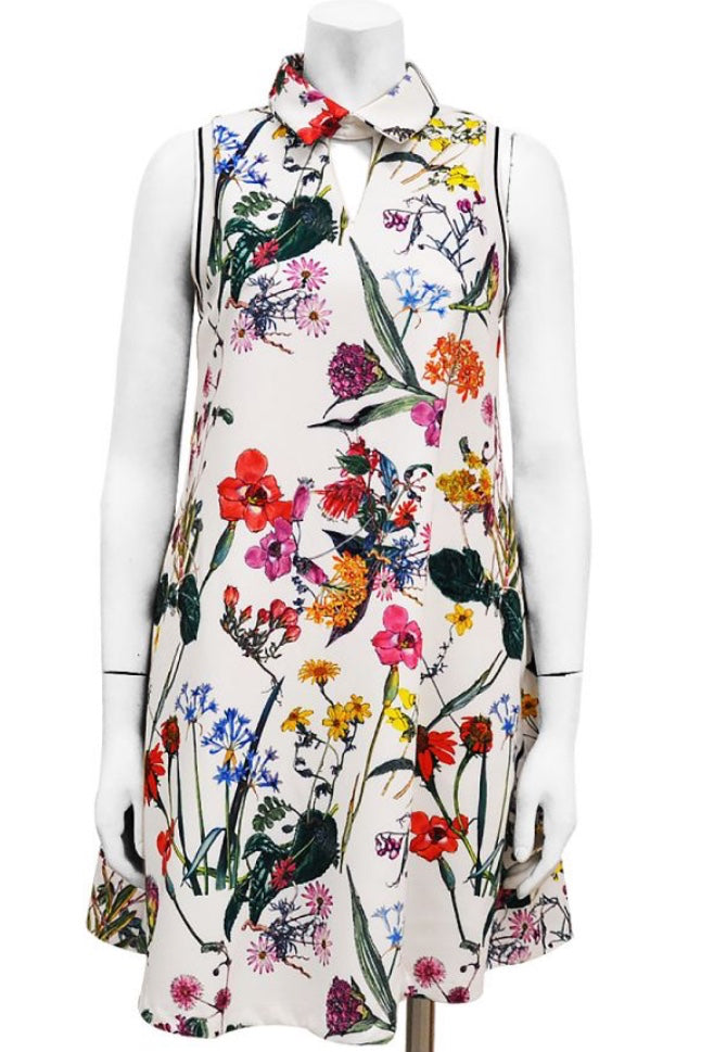 Floral Collared A-Line Dress
