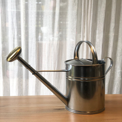 10L Galvanised Watering Can