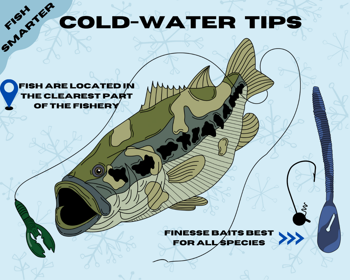 Cold Water Tips