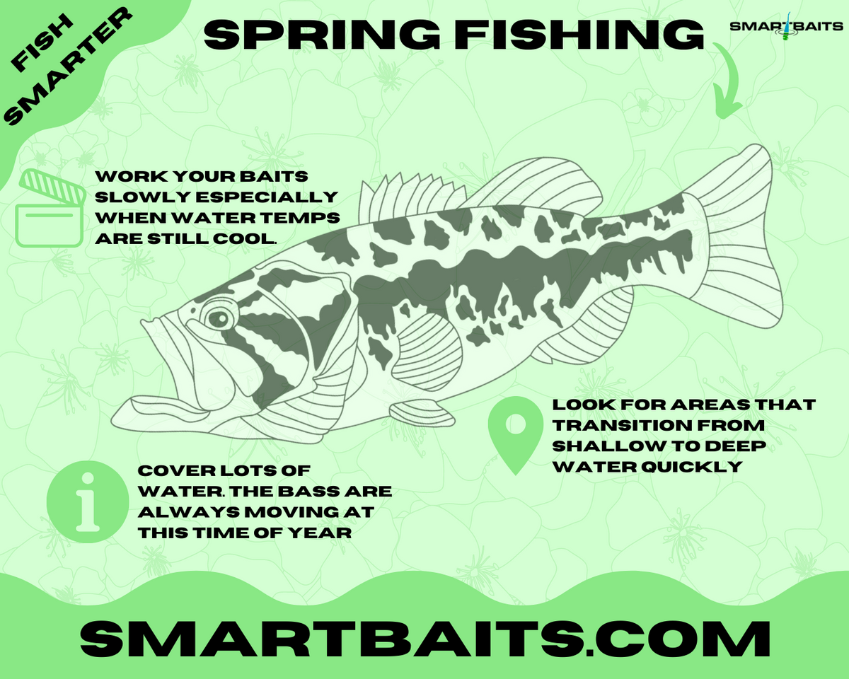 Spring Bass Fishing Tackle Tips & More!