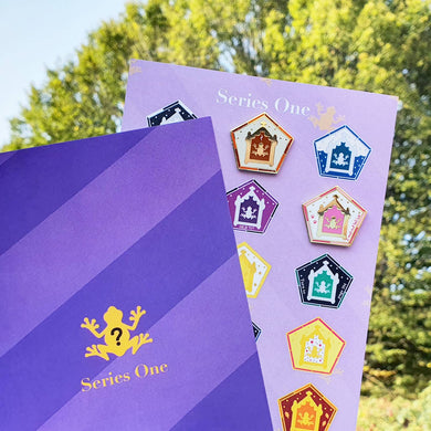 SERIES 1 Chocolate Frog Card Blind Bag Pins