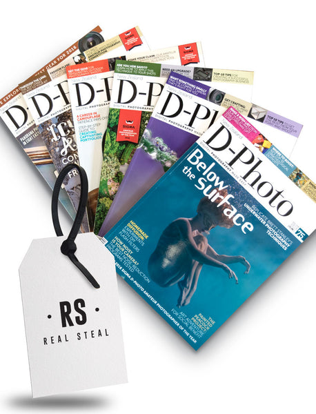 D-Photo back issue pack Real Steal