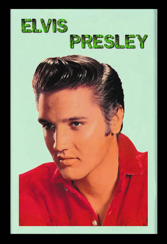 E060 - Elvis Portrait Mirror 2