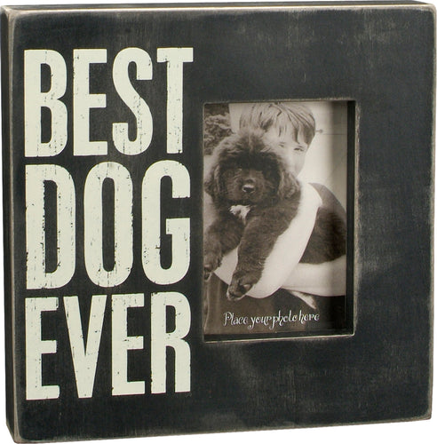 PK087 - 19136  Pk Box Best Dog Ever  10 Squ