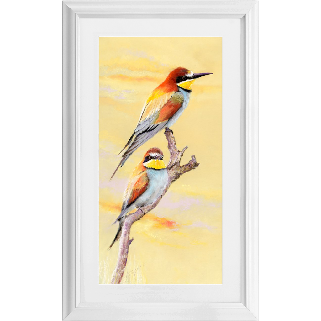 Bee Eaters at Sunset (Framed)