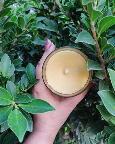 Fragrance Beeswax Candle - Take me away to orange blossom lane