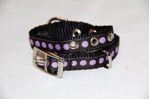 DOGzwear small dog buckle collar. Black with purple dots.