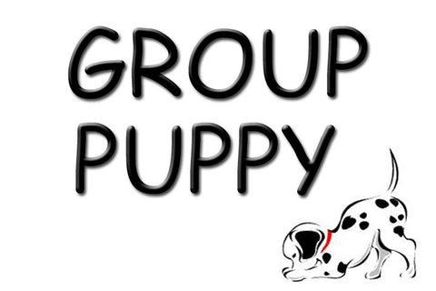 Group Puppy