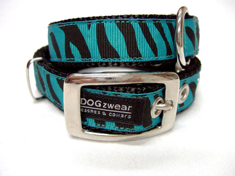 Dolly DOGzwear collar. Buckle collar.