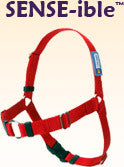 Sense-ible Dog Harness