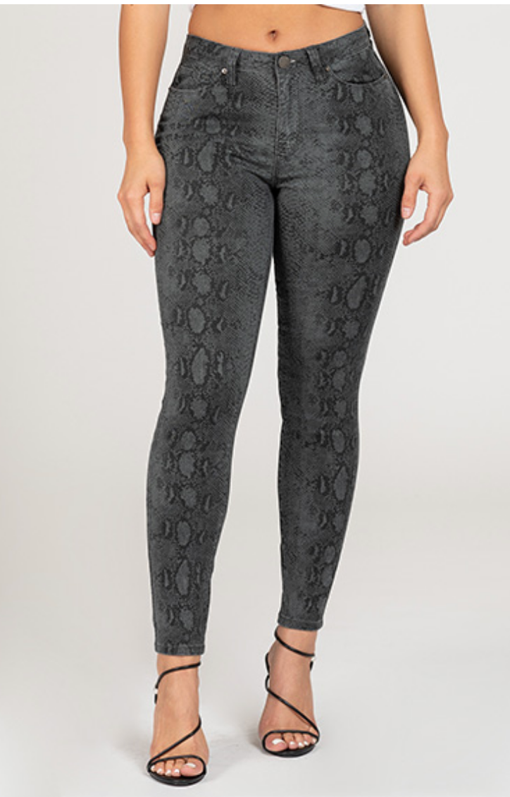 YMI HIGH-RISE SKINNY JEAN - CHARCOAL SNAKE - Final Sale