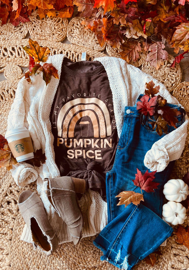 Taste the Pumpkin Spice Rainbow Tee- Heather Brown
