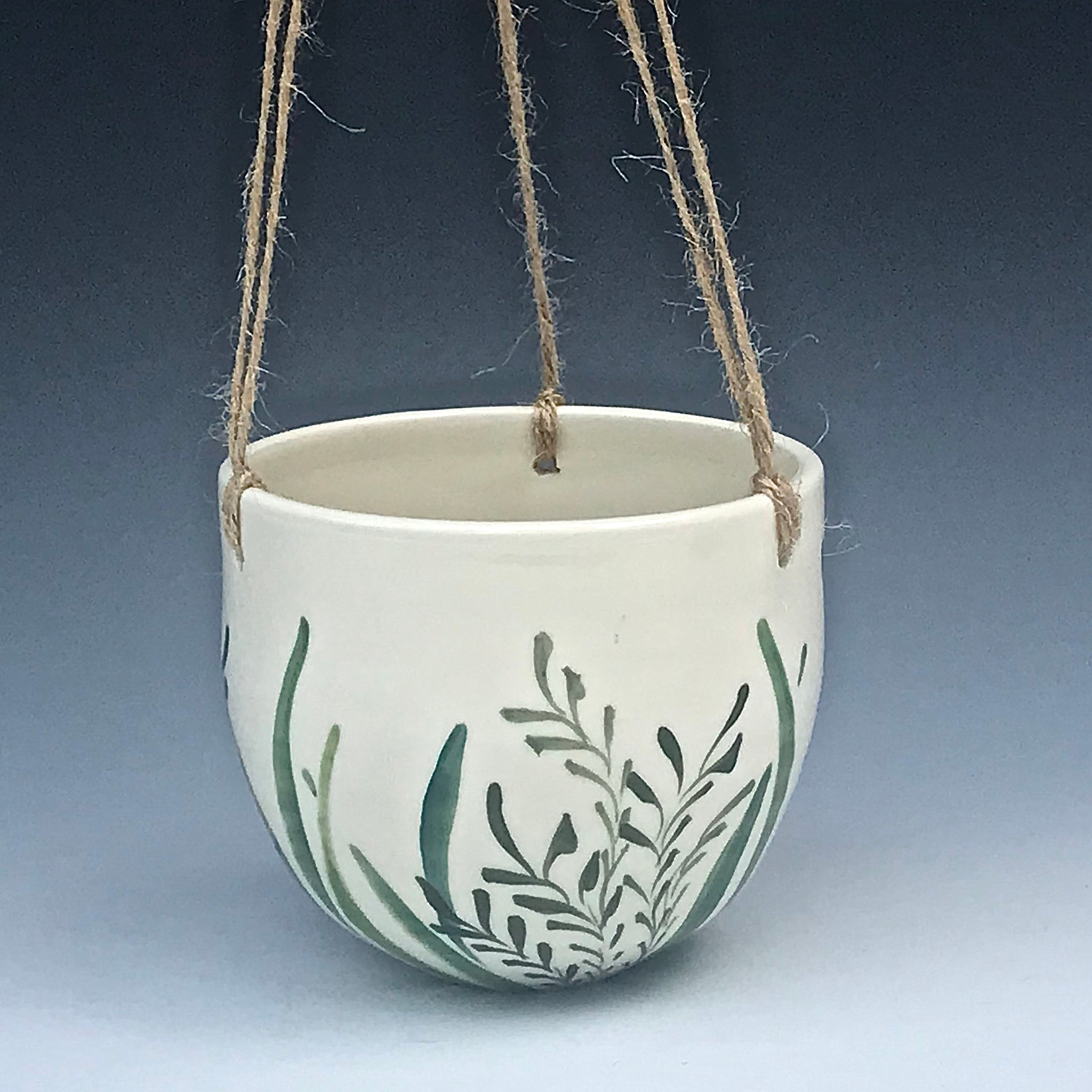 Fern Hanging Planter