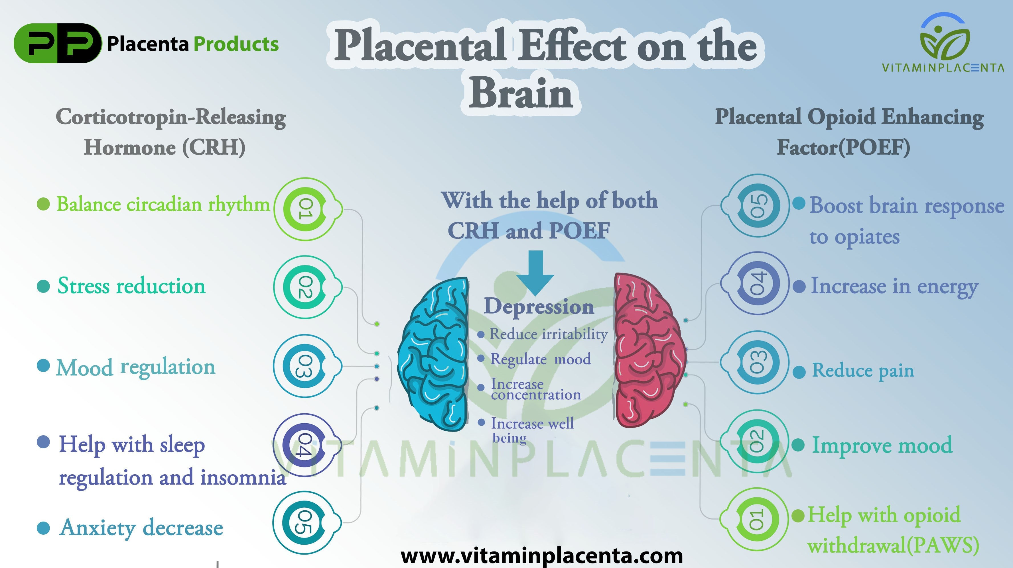 Placenta Effect on the Brain