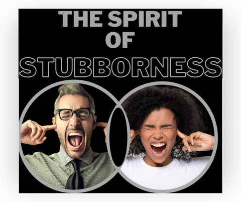 The Spirit of Stubbornness