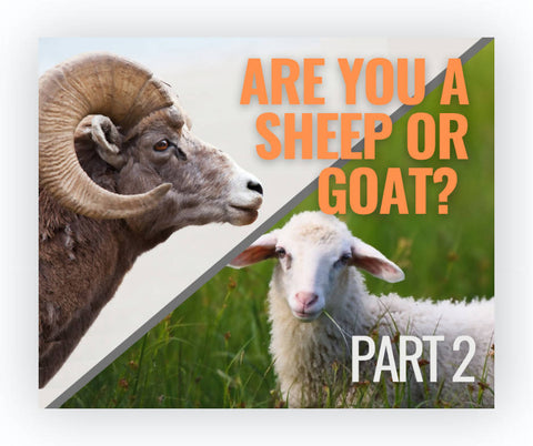 Are You A Sheep or Goat, Part 2