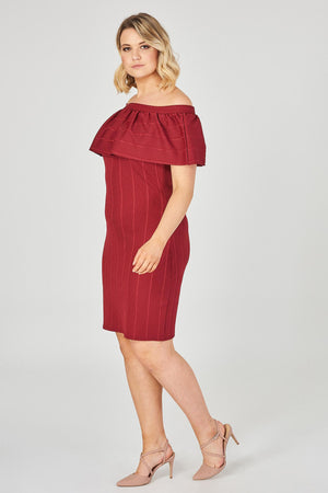 Gabby Bodycon Dress - Ann Et Craig