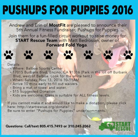 Pushups For Puppies 2016 fitness fundraiser in los angeles