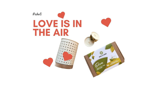 LOVE PAKET: IZPARILNIK ELLI + PAKET SVEČ EVVA VONJ LOVE IS IN THE AIR