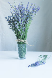 LAVENDER - scented candles