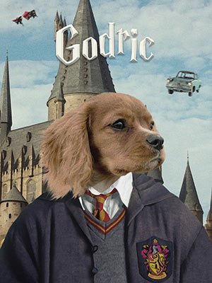 Harry Potter Pet Portraits
