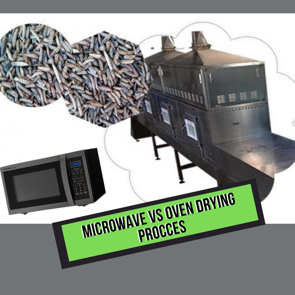 Microwave Vs Oven Drying Process