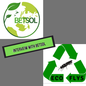 Interview With Betsol
