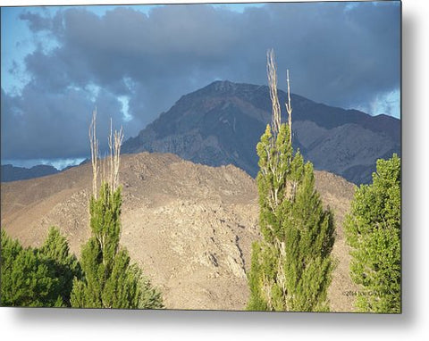 Bishop California - Metal Print