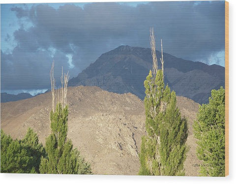 Bishop California - Wood Print