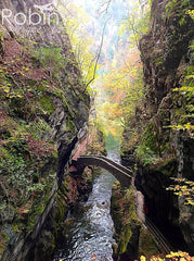 Photograph, RobinGoesTo, Areuse Gorge, Switzerland
