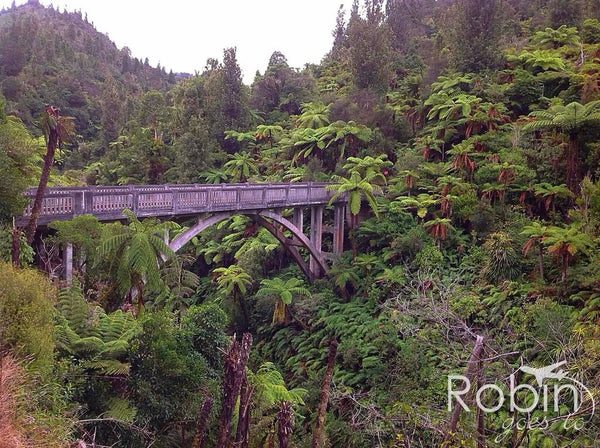 Bridge to Nowhere, Whanganui River Valley, New Zealand